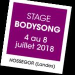 Bodysong 2018 - A vous de jouer