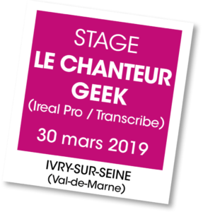 Stage le chanteur Geek mars 2019