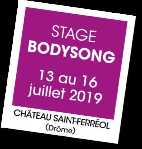 Stage Bodysong - A vous de jouer